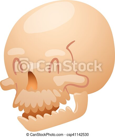 Skull face illustration isolated on white background. - csp41142530