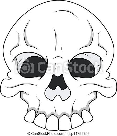 skull royalty free vector