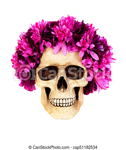 Skull with a wreath of pink flower isolated on a white background skull with a wreath of pink flower csp51182534 mightylinksfo