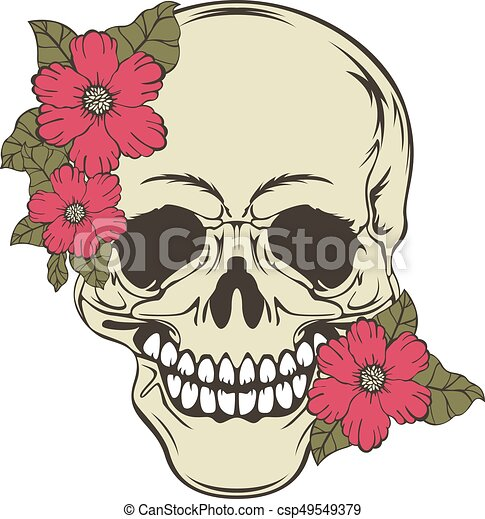 Skull with flowers - csp49549379