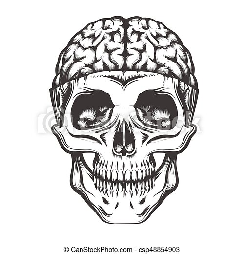 human skull with open brain vector illustration in tattoo vector clipart search human heart vector free human heart vector art