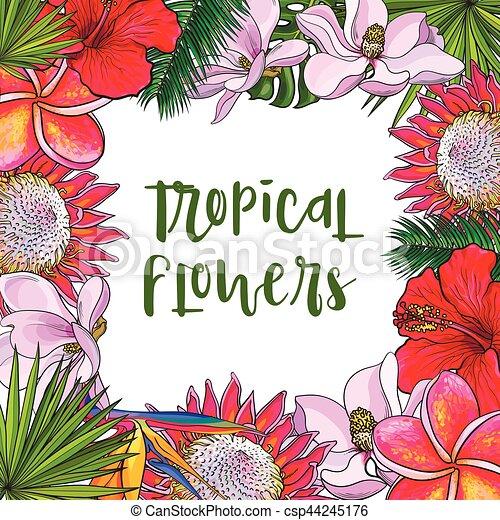 skwer, liście, tropikalny, dłoń, kwiaty, ułożyć - csp44245176