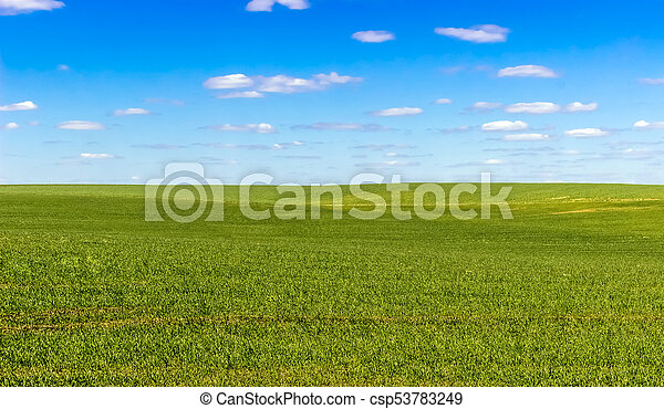 sky and grass ground background