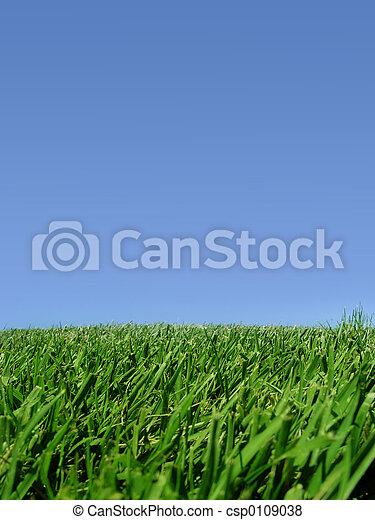 Sky and grass - csp0109038
