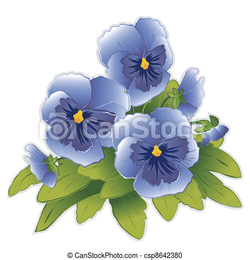 Sky Blue Pansies - csp8642380