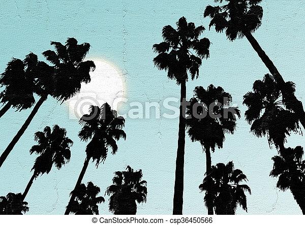 sky, palm - csp36450566
