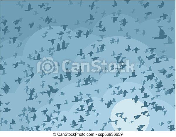 Sky with birds. - csp56936659
