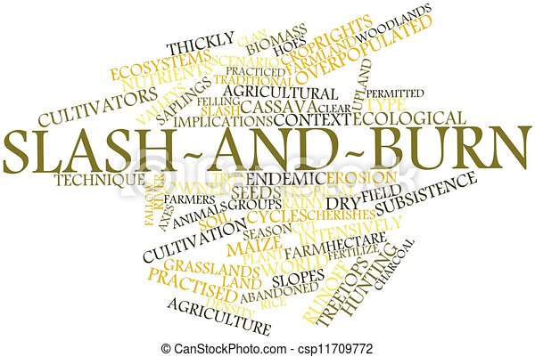 slash and burn 用語 タグ 抽象的 関係した 単語 雲