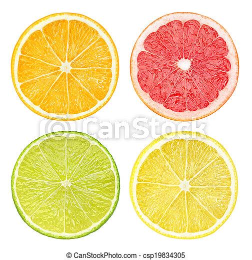 Slices of citrus fruits - csp19834305