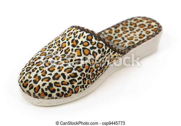 Slipper - csp9445773