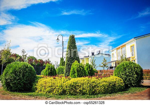Small backyard garden - csp55261328