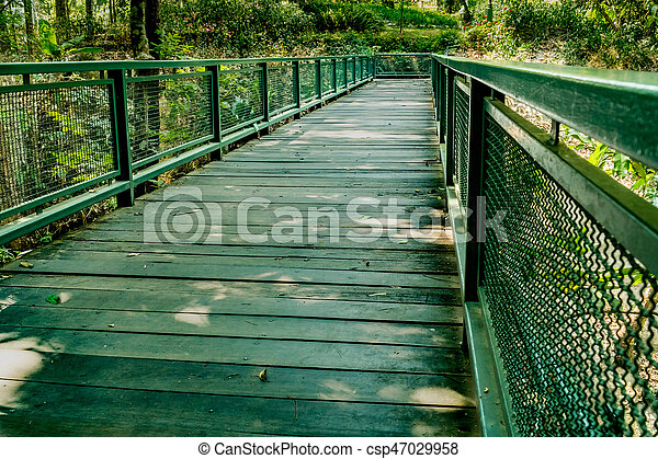 Small Bridge In Garden   Csp47029958