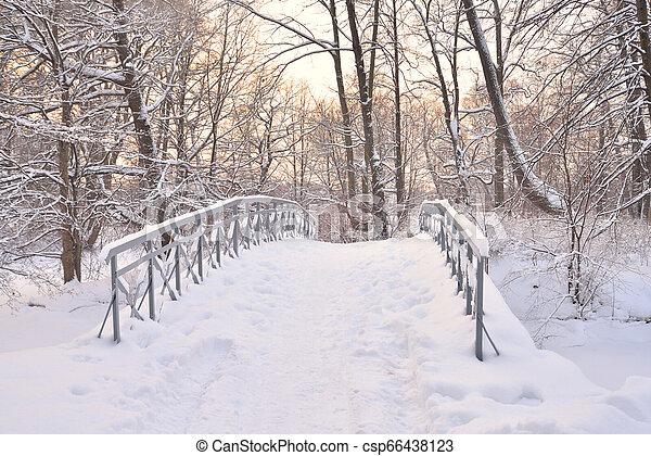 Small bridge in winter park. - csp66438123