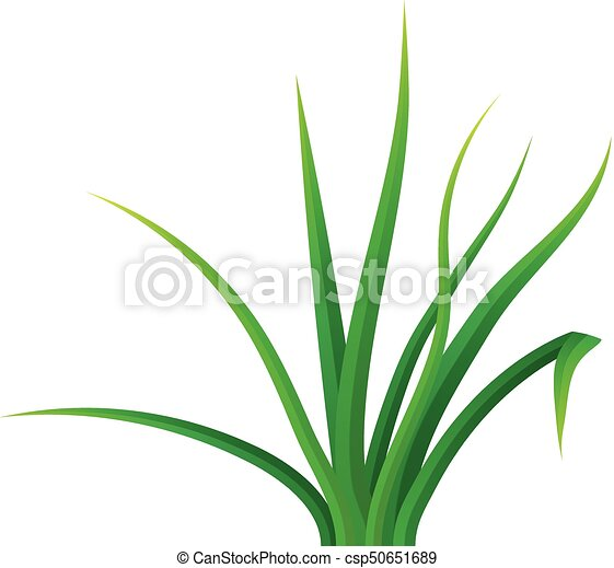 small bunch grass icon realistic style small bunch grass vector rh canstockphoto ca