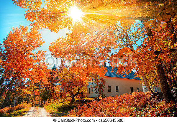 Small church in typical New England town with fall foliage - csp50645588
