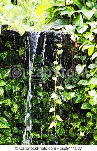 Small falls in tropics - csp9411537
