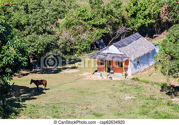 Small farm house in Vinales valley, Cub - csp62634920