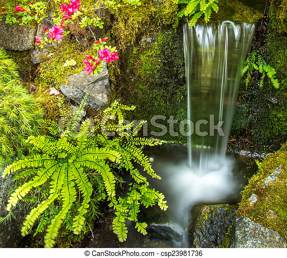 Small Fern Garden Waterfall   Csp23981736