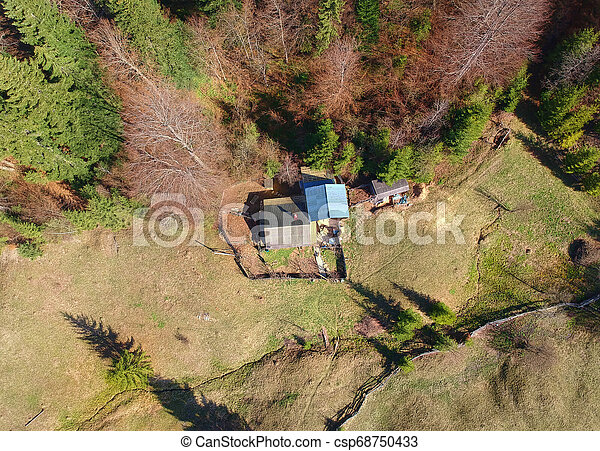 small hut or house in the forest. aerial view - csp68750433
