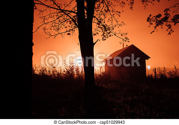 small mysterious house in the autumn foggy forest. - csp51029943