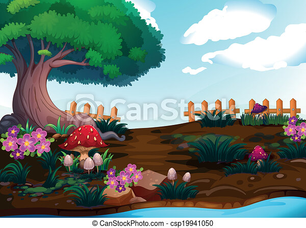 Small plants near the giant tree - csp19941050