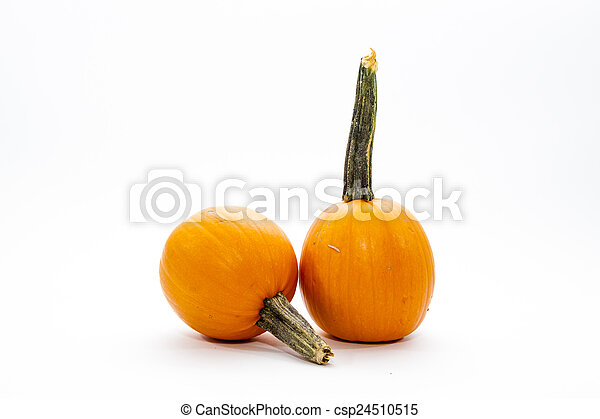 Small Pumpkin - csp24510515
