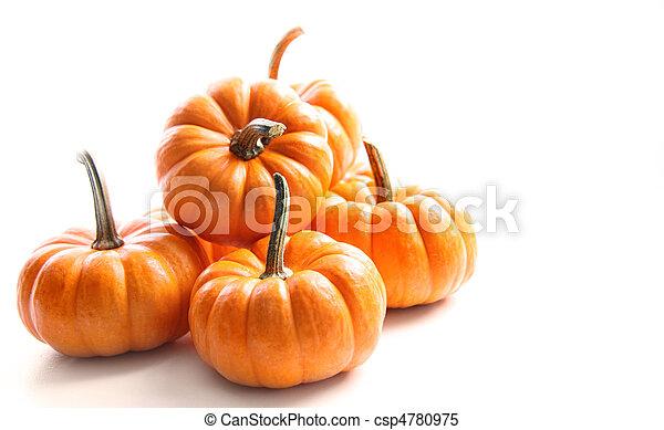 Small pumpkins on white on white - csp4780975