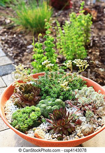 Small Rock Garden   Csp4143078