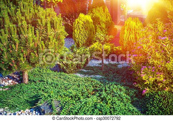 Small Rockery Garden - csp30072792