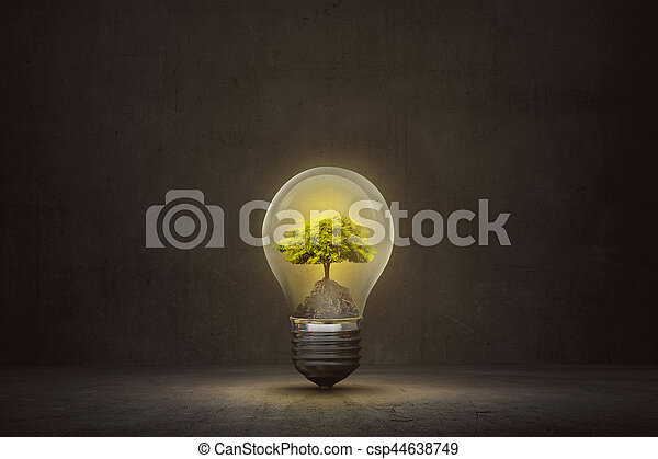 small tree inside light bulb on the dark room background