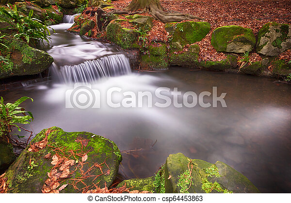 Small Waterfalls in Woodland - csp64453863