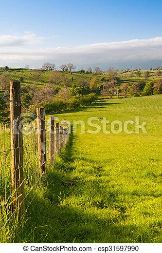 En el prado, la bragueta de Smardale, Gran Bretaña - csp31597990