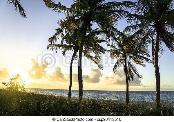 Smathers Beach in Key West Florida - csp90413510