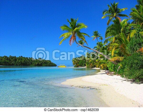 smukke, ø, aitutaki, ene fod, kok øer, strand - csp1462039