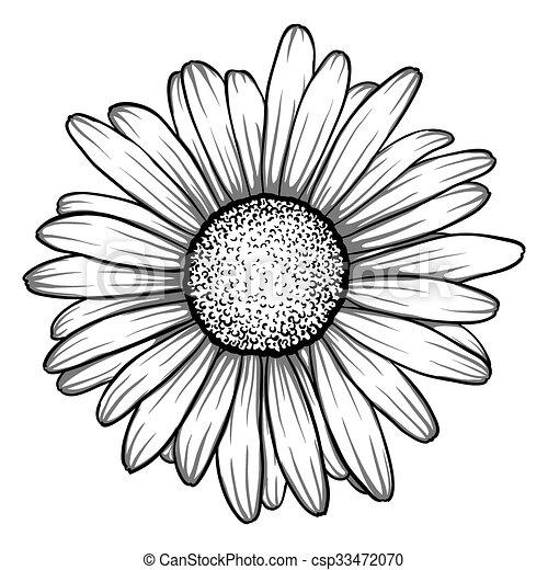 tegning blomst