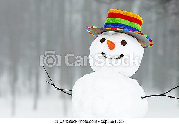 snögubbe, rolig, vinter - csp5591735