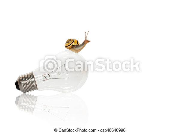 Snail On The Bulb - Growth - csp48640996