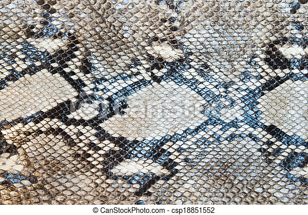Snake skin pattern texture background  - csp18851552