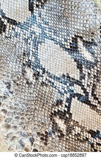 Snake skin pattern texture background  - csp18852897