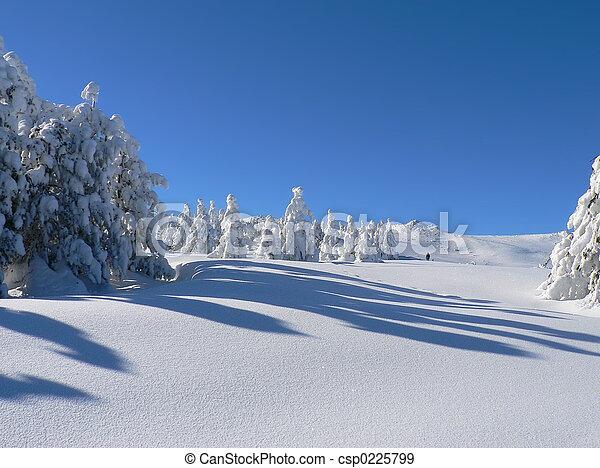 Snow 1 - csp0225799
