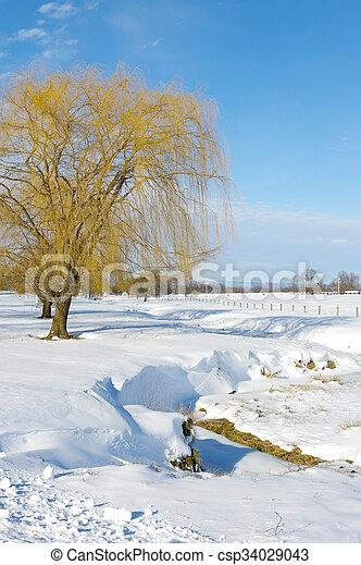 Snow Covered Meadow - csp34029043