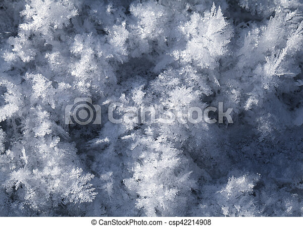 Snow crystals on the ground - csp42214908
