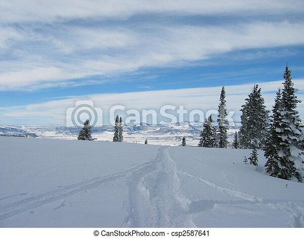 Snow Drop Off - csp2587641