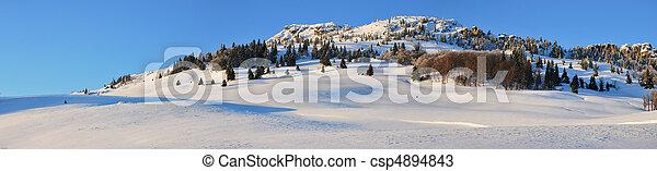 Snow fields - csp4894843