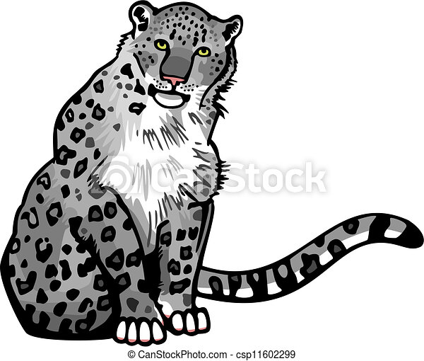 snow leopard vector illustration of a snow leopard sitting rh canstockphoto com snow leopard clipart black and white baby snow leopard clipart