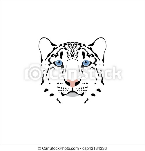 Snow leopard head. - csp43134338