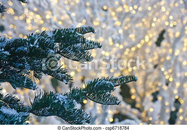 Snow On Fir Trees With Christmas Lights In Background