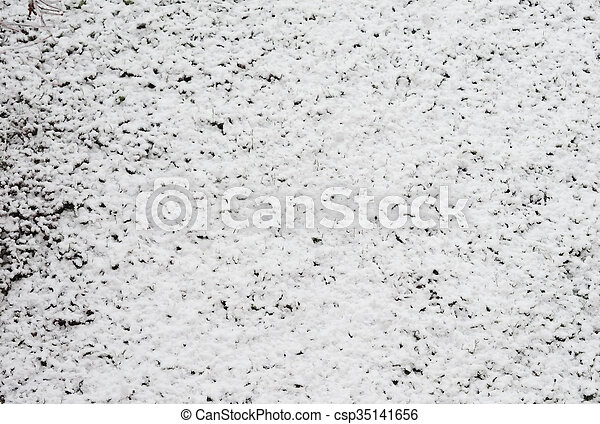 Snow on meadow - csp35141656