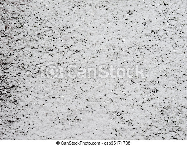 Snow on meadow - csp35171738