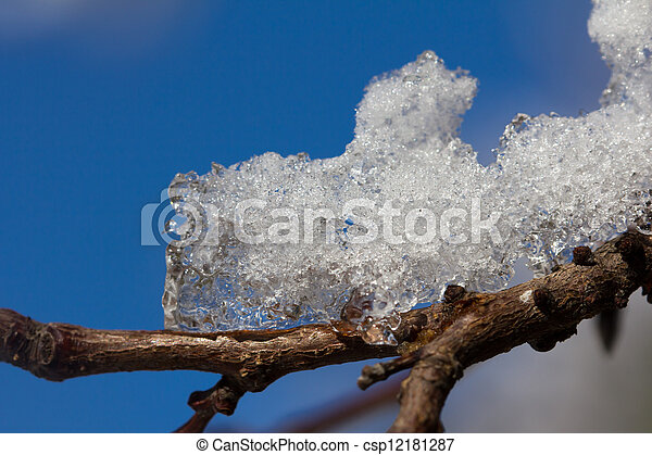 Snow on the branches of a tree against a blue sky - csp12181287